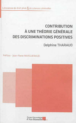 Contribution à une théorie générale des discriminations positives