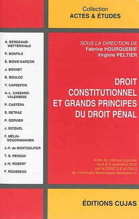 Droit constitutionnel et grands principes du droit pénal