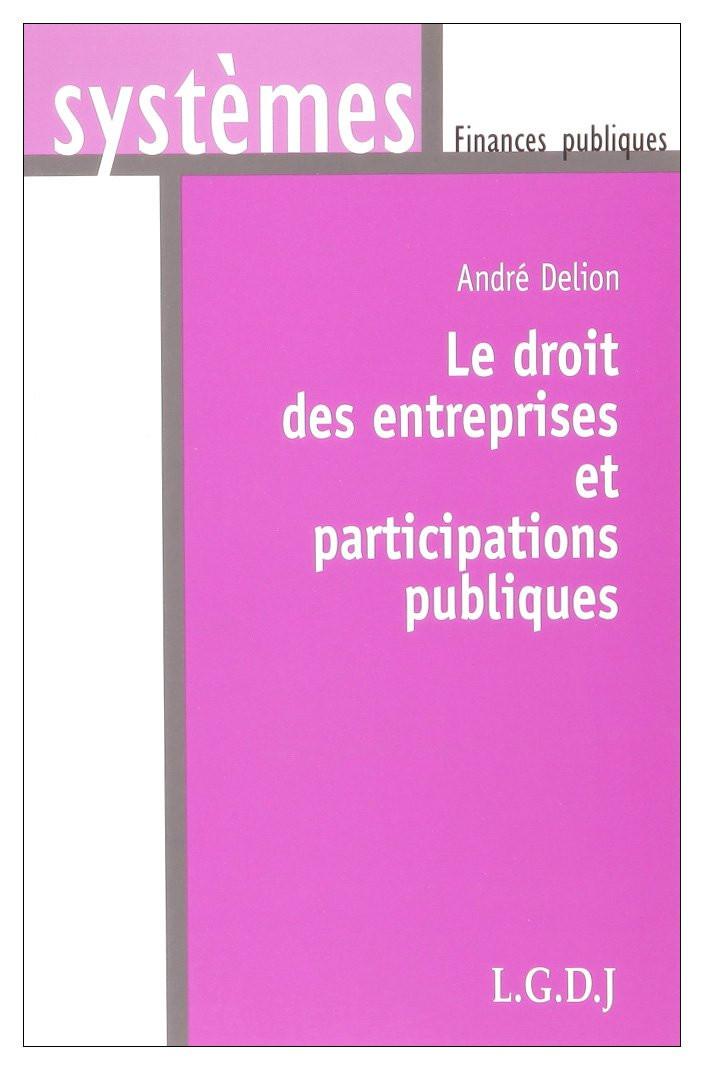 Droit des entreprises et participations publiques