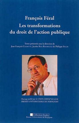 François Féral - Les transformations du droit de l'action publique