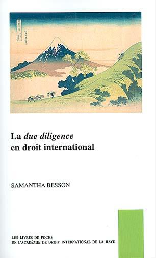 La due diligence en droit international