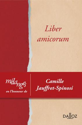 Mélanges en l'honneur de Camille Jauffret-Spinosi