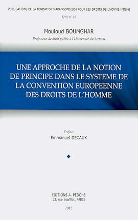 Une approche de la notion de principe dans le système de la Convention européenne des droits de l'homme
