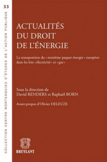 """Actualités du droit de l'énergie, la transposition du """"troisième paquet énergétique"""" européen dans les lois """"électricité"""""""