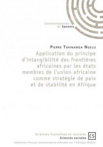 Application du principe d'intangibilité des frontières africaines par les états membres de l'union africaine comme stratégie de paix et de stabilité en Afrique