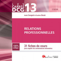Carrés DCG 13 - Relations professionnelles
