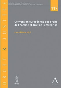 Convention européenne des droits de l'homme et droit de l'entreprise