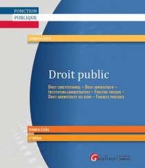 Droit public [EBOOK]