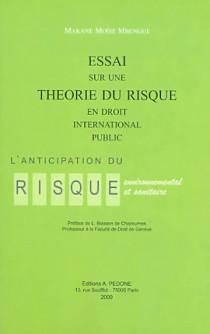 Essai sur une théorie du risque en droit international public