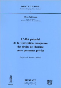 L'effet potentiel de la Convention européenne des droits de l'homme entre personnes privées