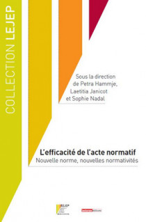 L'efficacité de l'acte normatif