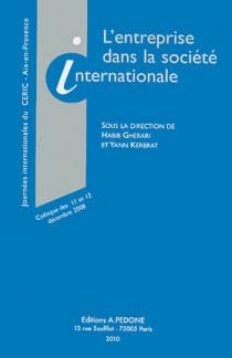 L'entreprise dans la société internationale