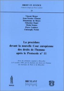 La procédure devant la nouvelle cour européenne des droits de l'homme après le protocole n° 11