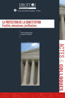 La protection de la constitution
