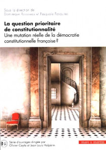 La question prioritaire de la constitutionnalité