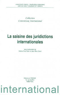 La saisine des juridictions internationales