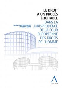 Le droit à un procès équitable dans la jurisprudence de la Cour européenne des droits de l'homme