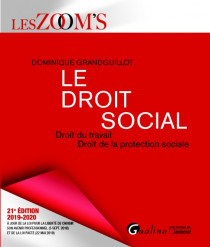 Le droit social [EBOOK]