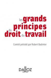 Les grands principes du droit du travail (mini format)