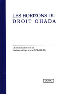 Les horizons du droit OHADA