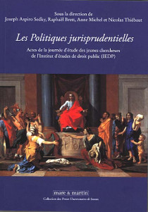 Les politiques jurisprudentielles