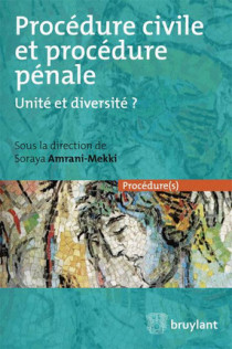 Procédure civile et procédure pénale. Unité ou diversité ?