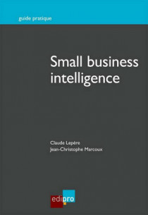 Small business intelligence