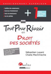Tour pour réussir en droit des sociétés [EBOOK]