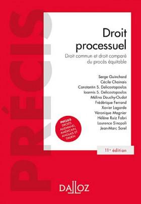 Droit processuel