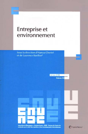 Entreprise et environnement