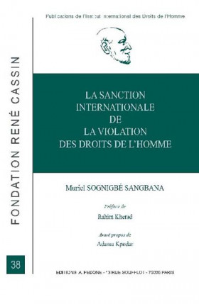 La sanction internationale de la violation des droits de l'homme